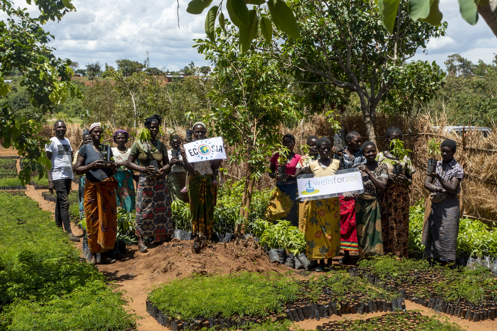 Ecosia Enyezini